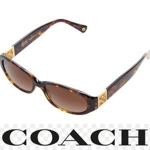 Coach H 8012 Havana Hope T CE tortoise sunglasses